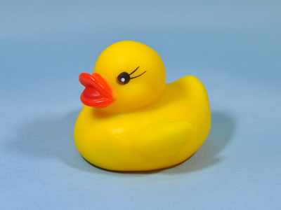 duckling07