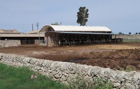 201809Mムーリアセッコと牛小屋のある農家