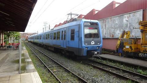 DSC05993