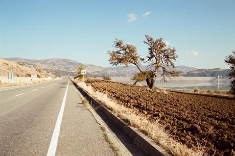 2001年11月伊ポリコーロ農村風景 (5)