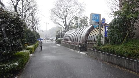 雪の竹橋の午後201801 (1)