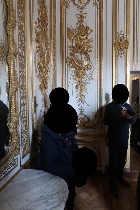 Versailles117a楽器のデザインの部屋