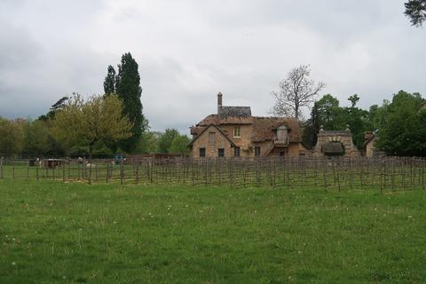 VersaillesPetit Trianon441ブドウ畑と疑似農家