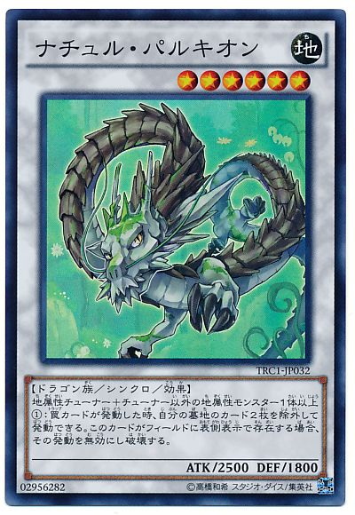 card100020811_1