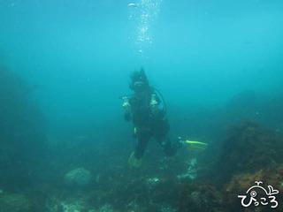 615_diver@IOP