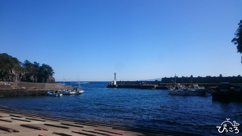 1021_八幡野港