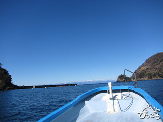 田子ボート