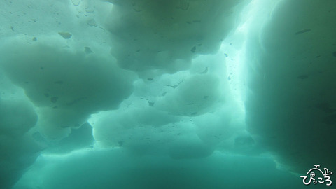 0228_大きな流氷