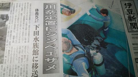 20140801伊豆新聞