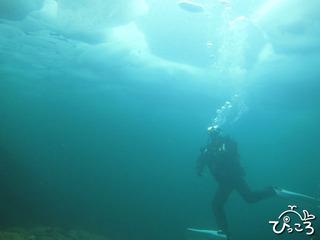 20130224アイスダイビング