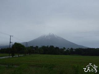 朝霧高原からみた富士山