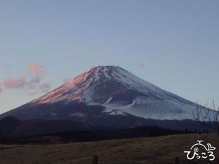忠ちゃん牧場からの富士山