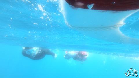 水面下はこんな感じ