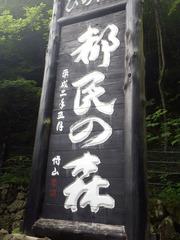 20130705三頭山 都民の森