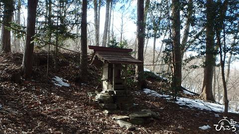 0117_浅間神社