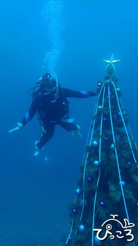 クリスマスツリー_PC050067