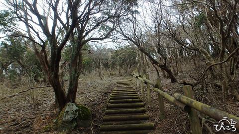 0320-魂の山への登り道