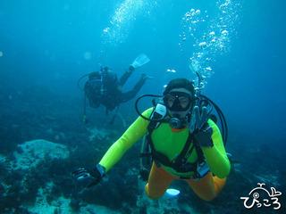 2012-12-31体験ダイバー
