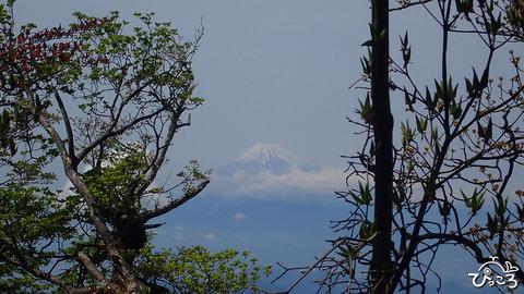 富士山_P5140344