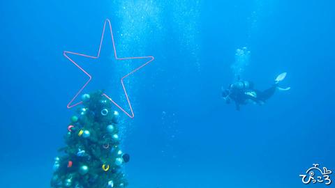 クリスマス_IMG_3447