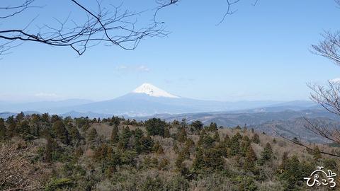 200223_富士山
