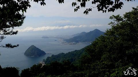 富士山と淡島_P5290366
