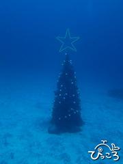 2012-11-29クリスマスツリー@IOP