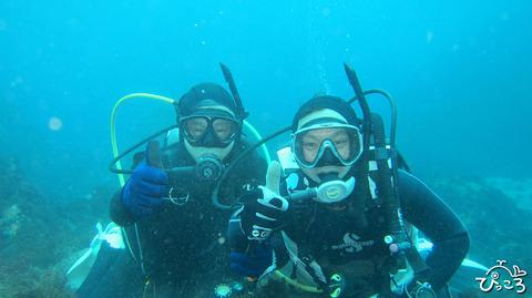1127_diver