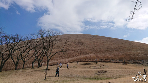大室山山焼き2020