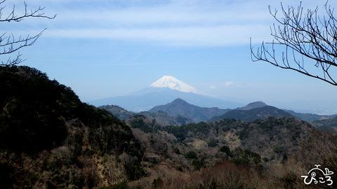 富士山と鷲頭山