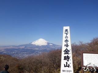 2013-1-30金時山