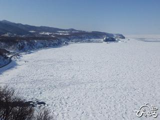 プユニ岬からの流氷