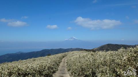 富士山と小達磨山