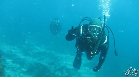 1228_diver