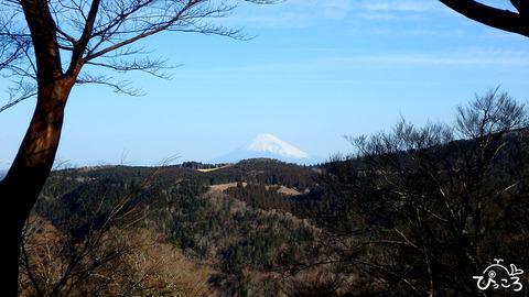 富士山_P3100119