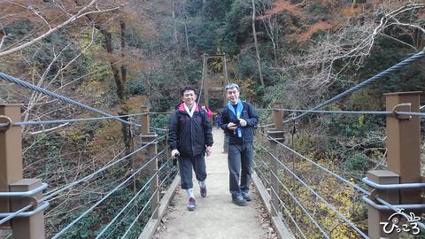 1210_吊り橋