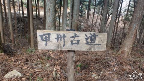 0117_甲州古道