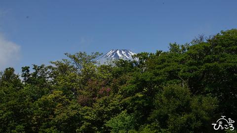 富士山_越前岳頂上にて