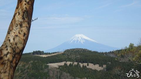 0418_向井峠からの富士山