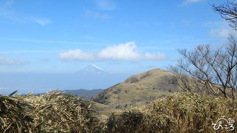 富士山と達磨山