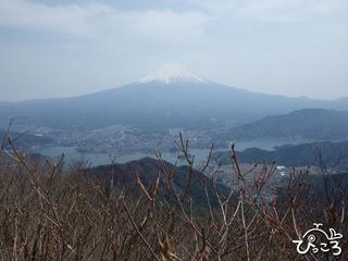 黒岳山頂より富士山