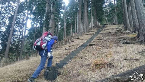 急登につけられた階段