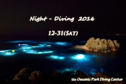 iop_nightdiving