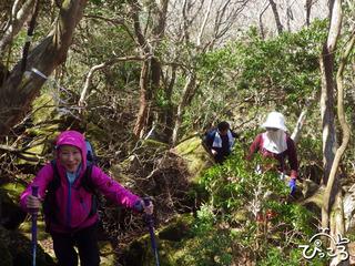 岩ゴロゴロの登山道