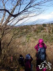 富士山の写真撮影大会