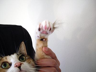 その手に掴むモノ。