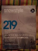 snow style 2010 december