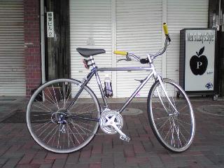 自転車でエコライド