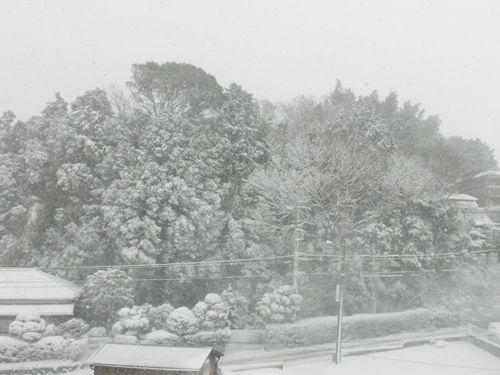 snow03