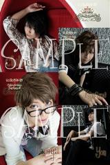 sample20110514-15